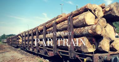 Logistique de bois rond