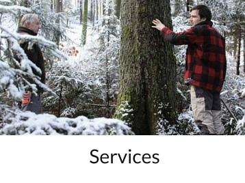 Négoce de bois - entreprise forestièreNégoce de bois - entreprise forestière Hiram Forêt et Bois