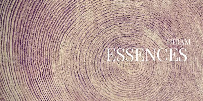 Négoce de bois - bois rondNégoce de bois - entreprise forestière