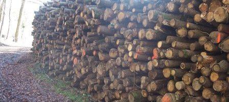 Produits Connexes et Bois Recycles