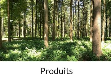 Négoce de bois - entreprise forestière Hiram Forêt et Bois